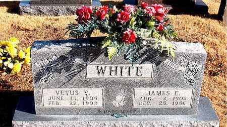 WHITE, VETUS V. - Carroll County, Arkansas | VETUS V. WHITE - Arkansas Gravestone Photos