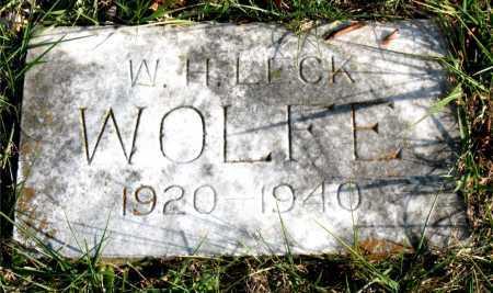 WOLFE, W. H. LECK - Carroll County, Arkansas | W. H. LECK WOLFE - Arkansas Gravestone Photos