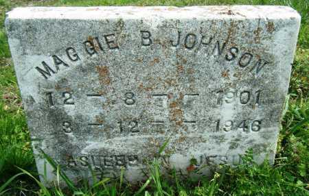 JOHNSON, MAGGIE B - Chicot County, Arkansas | MAGGIE B JOHNSON - Arkansas Gravestone Photos