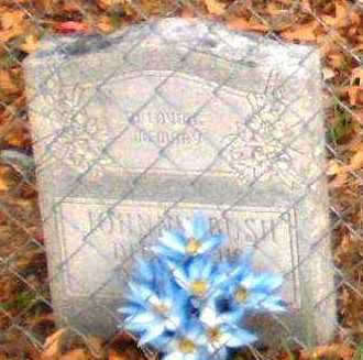 BUSH, JOHNNY - Chicot County, Arkansas | JOHNNY BUSH - Arkansas Gravestone Photos