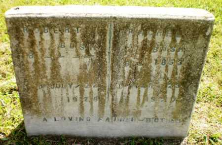 BUSH, ROBERT - Chicot County, Arkansas   ROBERT BUSH - Arkansas Gravestone Photos