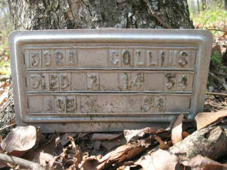 COLLINS, DORA - Chicot County, Arkansas | DORA COLLINS - Arkansas Gravestone Photos