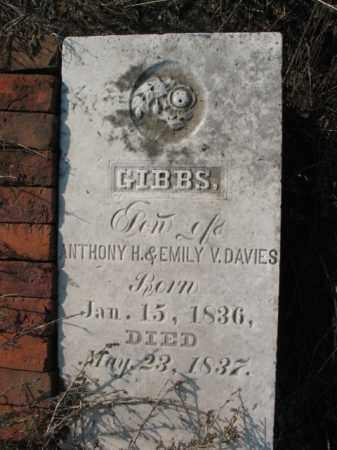 DAVIES, GIBBS - Chicot County, Arkansas | GIBBS DAVIES - Arkansas Gravestone Photos