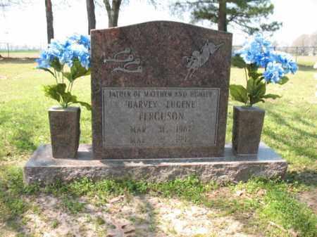 FERGUSON, HARVEY EUGENE - Chicot County, Arkansas   HARVEY EUGENE FERGUSON - Arkansas Gravestone Photos