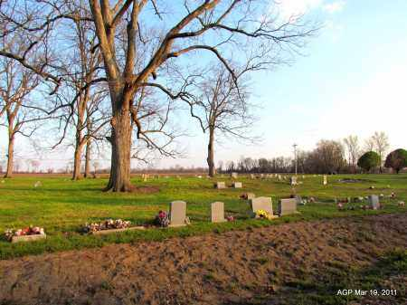 *GREEN LAND CEMETERY OVERVIEW,  - Chicot County, Arkansas |  *GREEN LAND CEMETERY OVERVIEW - Arkansas Gravestone Photos