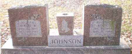 JOHNSON, ALBERT W - Chicot County, Arkansas | ALBERT W JOHNSON - Arkansas Gravestone Photos