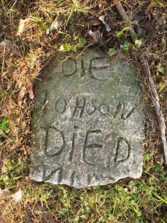 JOHNSON, DIF - Chicot County, Arkansas | DIF JOHNSON - Arkansas Gravestone Photos