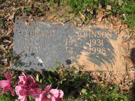 JOHNSON, EDWARD - Chicot County, Arkansas | EDWARD JOHNSON - Arkansas Gravestone Photos