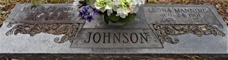 JOHNSON, LEONA - Chicot County, Arkansas | LEONA JOHNSON - Arkansas Gravestone Photos