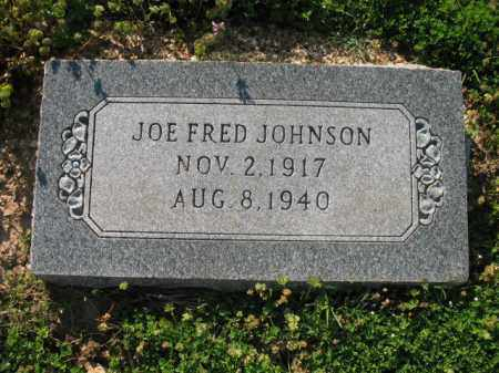 JOHNSON, JOE FRED - Chicot County, Arkansas | JOE FRED JOHNSON - Arkansas Gravestone Photos