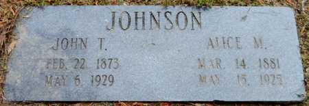 JOHNSON, JOHN T - Chicot County, Arkansas | JOHN T JOHNSON - Arkansas Gravestone Photos
