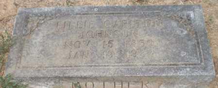 JOHNSON, LILLIE - Chicot County, Arkansas | LILLIE JOHNSON - Arkansas Gravestone Photos