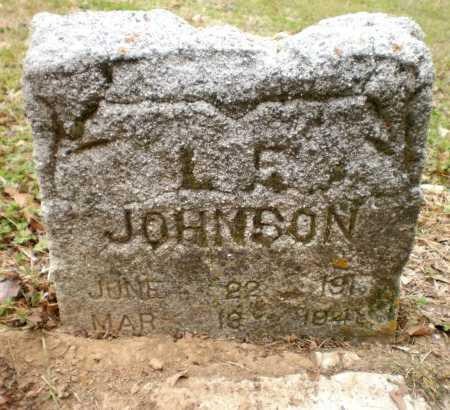 JOHNSON, L E - Chicot County, Arkansas | L E JOHNSON - Arkansas Gravestone Photos
