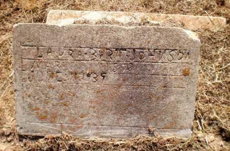 JOHNSON, LAURA - Chicot County, Arkansas | LAURA JOHNSON - Arkansas Gravestone Photos