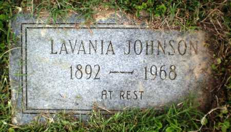 JOHNSON, LAVANIA - Chicot County, Arkansas | LAVANIA JOHNSON - Arkansas Gravestone Photos