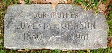 JOHNSON, LUVENIA - Chicot County, Arkansas | LUVENIA JOHNSON - Arkansas Gravestone Photos