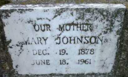 JOHNSON, MARY - Chicot County, Arkansas | MARY JOHNSON - Arkansas Gravestone Photos