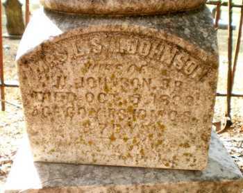 JOHNSON, LARINA S N, MRS - Chicot County, Arkansas | LARINA S N, MRS JOHNSON - Arkansas Gravestone Photos