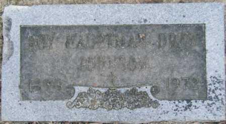 JOHNSON, ROY HAUPTMAN DREW - Chicot County, Arkansas | ROY HAUPTMAN DREW JOHNSON - Arkansas Gravestone Photos
