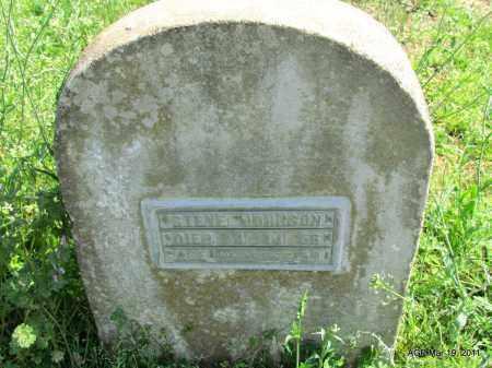 JOHNSON, STEVE - Chicot County, Arkansas | STEVE JOHNSON - Arkansas Gravestone Photos