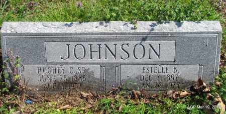 JOHNSON, ESTELLE B - Chicot County, Arkansas | ESTELLE B JOHNSON - Arkansas Gravestone Photos