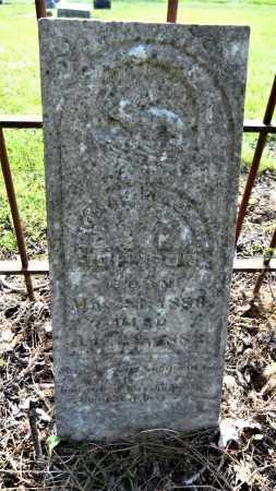 JOHNSON, THOMAS BENJAMIN - Chicot County, Arkansas | THOMAS BENJAMIN JOHNSON - Arkansas Gravestone Photos