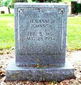 JOHNSON, TEXIANNE F - Chicot County, Arkansas | TEXIANNE F JOHNSON - Arkansas Gravestone Photos