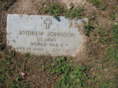 JOHNSON (VETERAN WWII), ANDREW - Chicot County, Arkansas | ANDREW JOHNSON (VETERAN WWII) - Arkansas Gravestone Photos