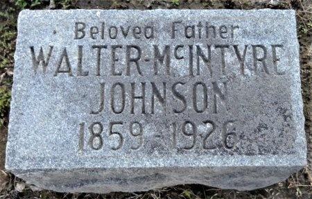 JOHNSON, WALTER MCINTYRE - Chicot County, Arkansas | WALTER MCINTYRE JOHNSON - Arkansas Gravestone Photos