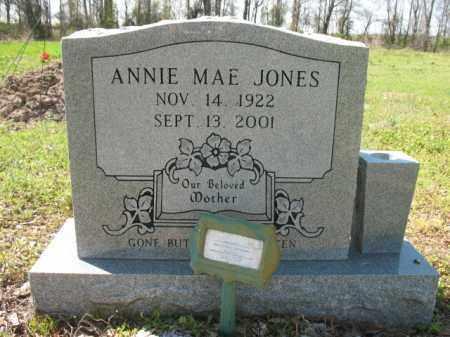 JONES, ANNIE MAE - Chicot County, Arkansas | ANNIE MAE JONES - Arkansas Gravestone Photos
