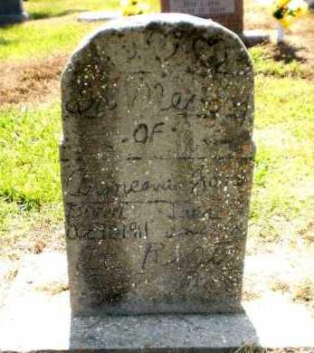 JONES, ARMEANIA - Chicot County, Arkansas | ARMEANIA JONES - Arkansas Gravestone Photos