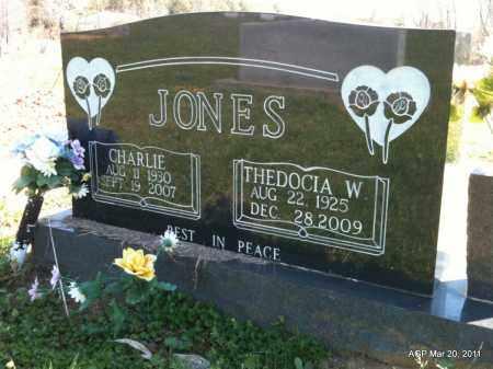 JONES, CHARLIE - Chicot County, Arkansas | CHARLIE JONES - Arkansas Gravestone Photos