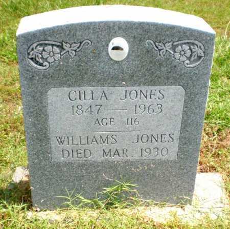 JONES, WILLIAMS - Chicot County, Arkansas | WILLIAMS JONES - Arkansas Gravestone Photos
