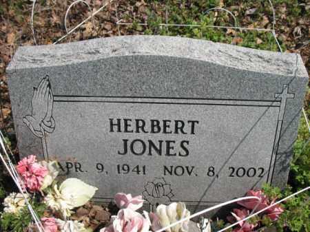 JONES, HERBERT - Chicot County, Arkansas | HERBERT JONES - Arkansas Gravestone Photos