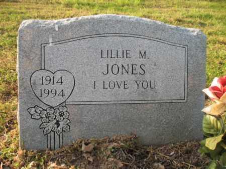 JONES, LILLIE M - Chicot County, Arkansas | LILLIE M JONES - Arkansas Gravestone Photos