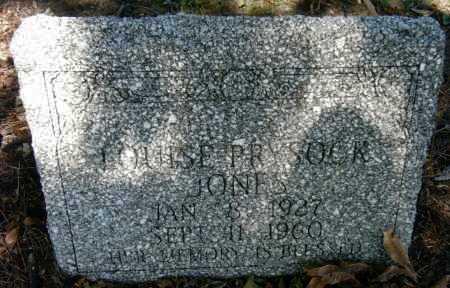 JONES, LOUISE - Chicot County, Arkansas   LOUISE JONES - Arkansas Gravestone Photos