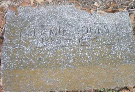 JONES, MIMMIE - Chicot County, Arkansas   MIMMIE JONES - Arkansas Gravestone Photos