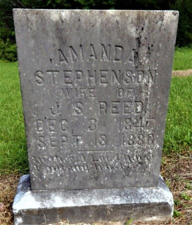 REED, AMANDA - Chicot County, Arkansas | AMANDA REED - Arkansas Gravestone Photos