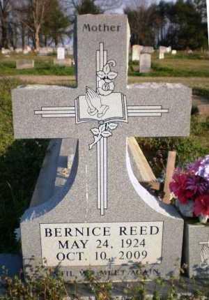 REED, BERNICE - Chicot County, Arkansas | BERNICE REED - Arkansas Gravestone Photos