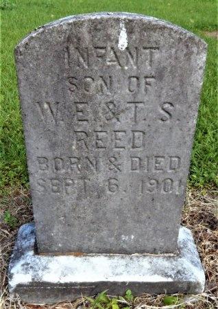 REED, INFANT SON - Chicot County, Arkansas | INFANT SON REED - Arkansas Gravestone Photos
