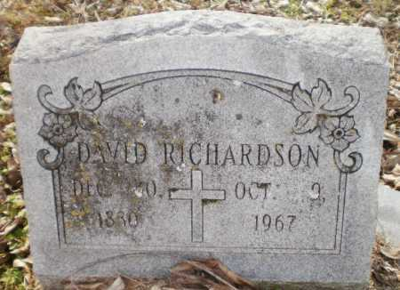 RICHARDSON, DAVID - Chicot County, Arkansas | DAVID RICHARDSON - Arkansas Gravestone Photos