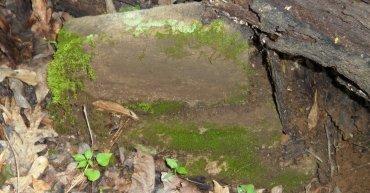 UNKNOWN, UNKNOWN - Chicot County, Arkansas   UNKNOWN UNKNOWN - Arkansas Gravestone Photos