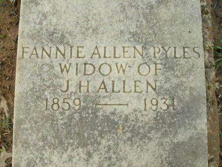 ALLEN, FANNIE - Clark County, Arkansas | FANNIE ALLEN - Arkansas Gravestone Photos