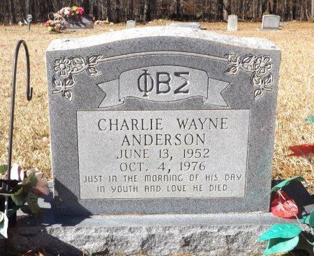 ANDERSON, CHARLIE WAYNE - Clark County, Arkansas | CHARLIE WAYNE ANDERSON - Arkansas Gravestone Photos