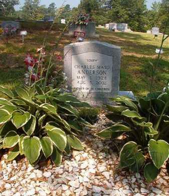 "ANDERSON, CHARLES MASO ""SOUPY"" - Clark County, Arkansas | CHARLES MASO ""SOUPY"" ANDERSON - Arkansas Gravestone Photos"