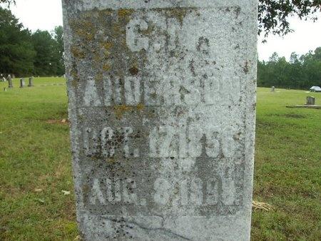 ANDERSON, G M - Clark County, Arkansas | G M ANDERSON - Arkansas Gravestone Photos