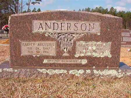 DICKERSON ANDERSON, HALLIE - Clark County, Arkansas | HALLIE DICKERSON ANDERSON - Arkansas Gravestone Photos