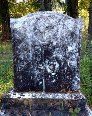 CONINE, LUCY M M - Clark County, Arkansas | LUCY M M CONINE - Arkansas Gravestone Photos