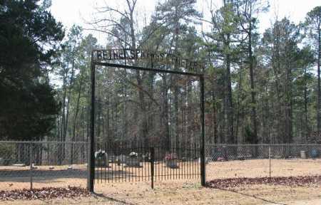*BETHEL SPRINGS CEMETERY, GATE - Clark County, Arkansas | GATE *BETHEL SPRINGS CEMETERY - Arkansas Gravestone Photos