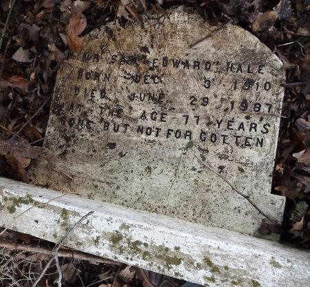 HALE, SAM EDWARD - Clark County, Arkansas | SAM EDWARD HALE - Arkansas Gravestone Photos